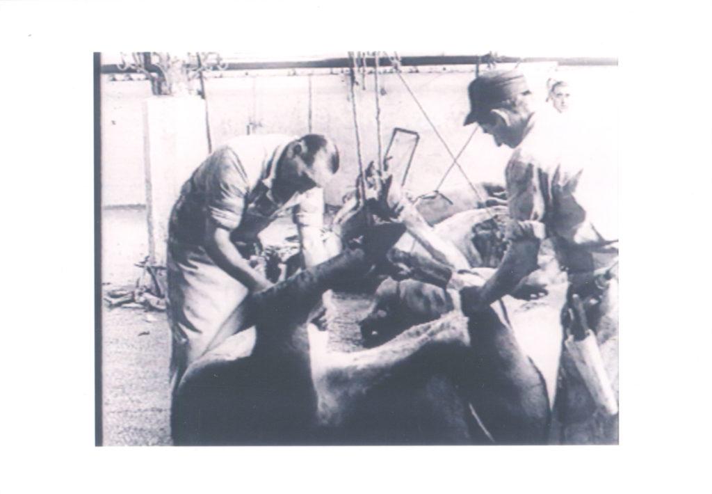 Ausstellung 1995 Anschauung und Begriff. Die Arbeiten des Instituts für Filmgestaltung Ulm 1962-1995