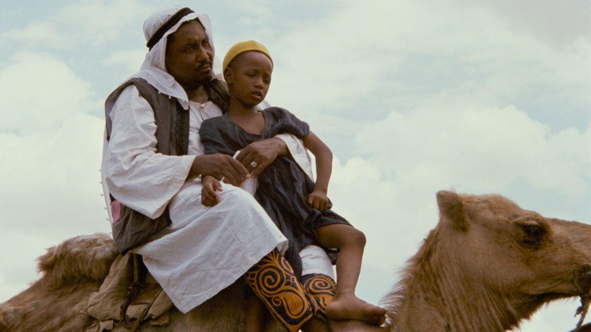 africa alive shaihu umar