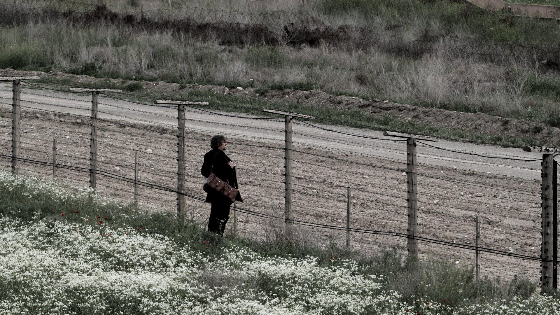 armenia m a litter