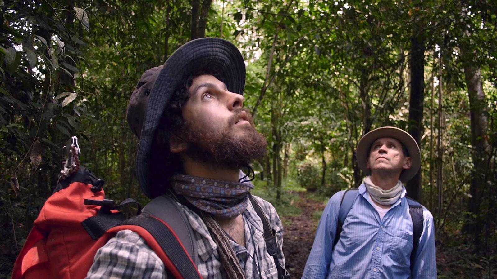 Filmstill Homo Botanicus